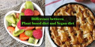 Difference between Plant based diet and Vegan diet