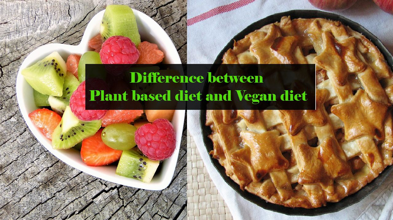 The difference between Plant based diet and Vegan diet ...