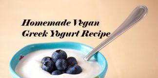 Homemade Vegan Greek Yogurt Recipe