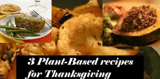 Plant-based recipes for Thanksgiving