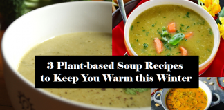 Plant-based soup recipes